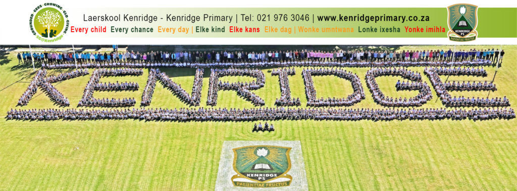 TRENDit-kenridge-primary-cover